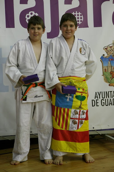 II Copa de España de Kata (Guadalajara)