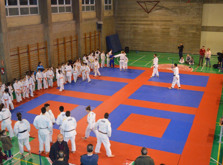 Torneo de Corazonistas – Judo Club Zaragoza 11/02/18
